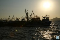 Yalikavak un petit port de pêcheurs et de plongeurs d'éponges