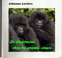 Grands Singes et Dispersion