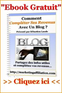 image-completer-revenu-blog1