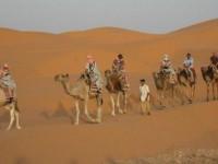 concepts_horizons_destination_tunisie-16