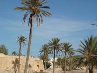 concepts_horizons_destination_tunisie-18