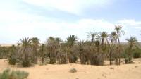 Tunisie investir dans le sud