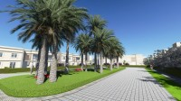 Tunisie kerkennah residence appartement 1 chambre S+1 a 300m de la plage mer soleil golf nautisme rendement locatif