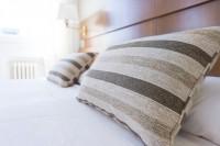Traitement punaise de lits